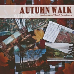 Cover image of the album Autumn Walk (single) by Brad Jacobsen