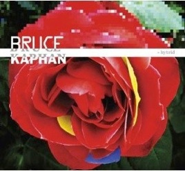 Cover image of the album Hybrid by Bruce Kaphan