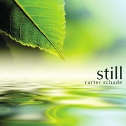 Cover image of the album Still by Carter Schade