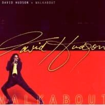 Cover image of the album Walkabout by David Hudson