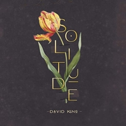 Cover image of the album Solitude by David King