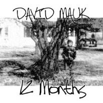Cover image of the album 12 Months by David Mauk