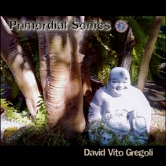 Cover image of the album Primordial Sonics by David Vito Gregoli