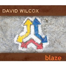 Cover image of the album Blaze by David Wilcox