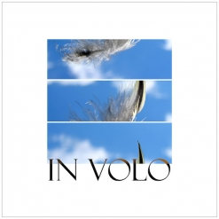 Cover image of the album In Volo by Bzur