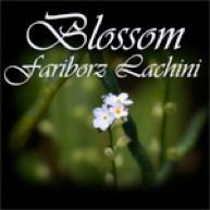 Cover image of the album Blossom (single) by Fariborz Lachini