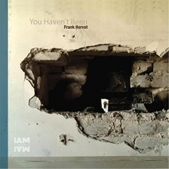 Cover image of the album You Haven't Been by Frank Horvat