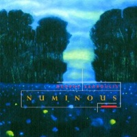 Cover image of the album Numinous by George Skaroulis