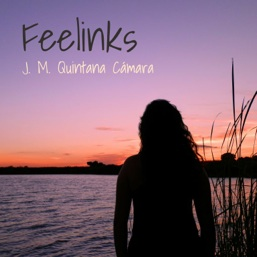 Cover image of the album Feelinks by J. M. Quintana Cámara