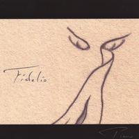 Cover image of the album Fidelio by Kourosh Dini