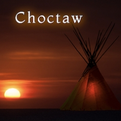Cover image of the album Choctaw (single) by Matt Johnson