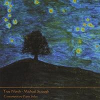 Cover image of the album True North by Michael Straugh