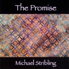 Cover image of the album The Promise by Michael Stribling