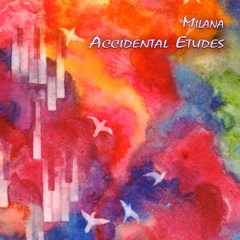 Cover image of the album Accidental Etudes by Milana Zilnik