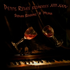 Cover image of the album Petits Reves Bizarres XIII-XXIV by Milana Zilnik and Stephan Beneking