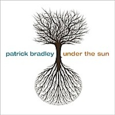 Cover image of the album Under the Sun by Patrick Bradley