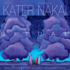 Cover image of the album Ritual by Peter Kater and R. Carlos Nakai