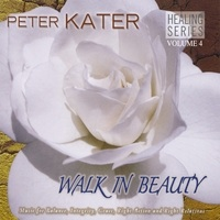 Cover image of the album Walk in Beauty by Peter Kater