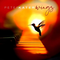 Cover image of the album Wings by Peter Kater
