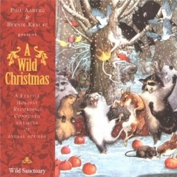 Cover image of the album A Wild Christmas by Philip Aaberg