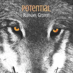 Cover image of the album Potential by Raphael Groten