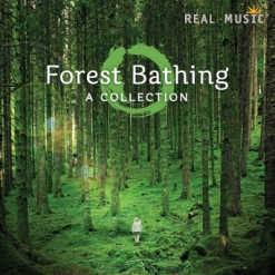 Cover image of the album Forest Bathing by Peter Kater