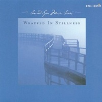 Cover image of the album Wrapped in Stillness by Real Music Compilations