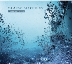 Cover image of the album Slow Motion by Thierry David