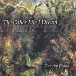 Cover image of the album The Other Life I Dream by Timothy Crane
