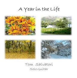 Cover image of the album A Year in the Life by Tom Salvatori