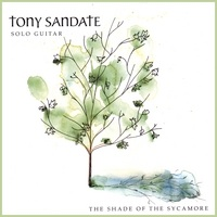 Cover image of the album The Shade of the Sycamore by Tony Sandate