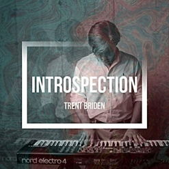 Cover image of the album Introspection by Trent Briden