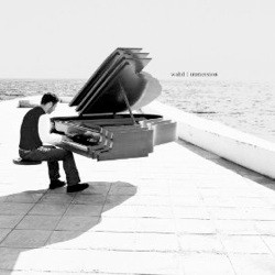 Cover image of the album Immersion by Walid Nahas