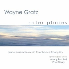 Cover image of the album Safer Places by Wayne Gratz
