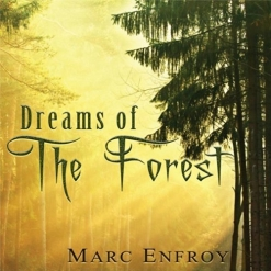 Interview with Marc Enfroy, image 10