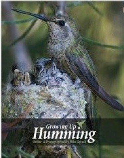 Cover image of the product Growing Up Humming by Mike Spinak
