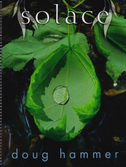 Cover image of the songbook Solace by Doug Hammer